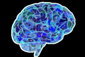 Brain - image from pixabay.com CC0