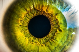 Eye - image from pexels.com CC0